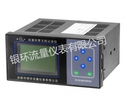 XMT-6000 intelligent flow indicator