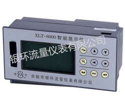 XMT-8000 intelligent flow indicator