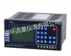 YT2 Intelligent Flow Totalizer / Controller
